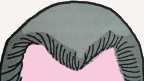 trán chữ M nữ giới để tóc gì